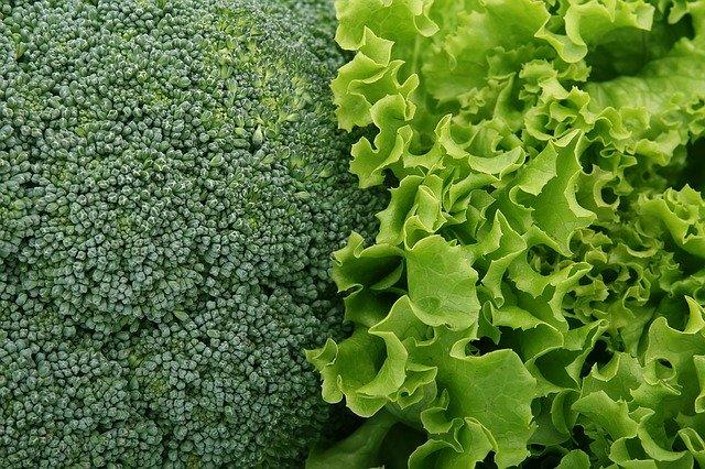brokolice vs. salát